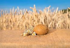 Impani il panino con i semi di sesamo che si trovano su una tavola Fotografia Stock