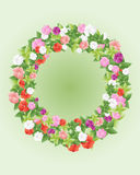 Impatiens and foliage Stock Image