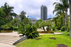 Impeccable garden in Monaco Royalty Free Stock Photography
