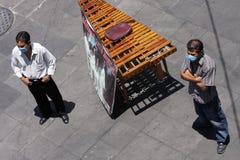 Impedire influenza dei maiali al Messico Immagine Stock