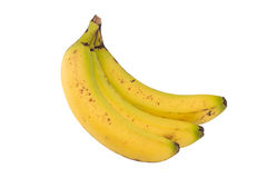 Imperfect banana trio side view isolated on white Stock Photography