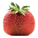 Imperfect organic fresh ripe heirloom strawberry isolated. Closeup Royalty Free Stock Photography