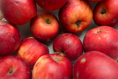 Imperfect red organic apples. From above stock photography