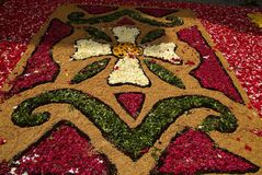 Imperia, Italy - June 10, 2007: Infiorata Lig. During the eve of the religious feast of Corpus Christi, including the night, the streets are depposti the path of Stock Photography
