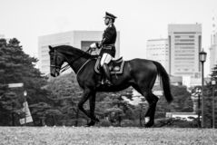 Imperial Cavalryman on the trot through downtown Tokyo stock photography