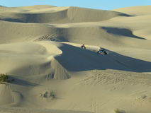 Imperial Dunes Royalty Free Stock Photos
