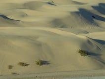 Imperial Dunes. Park at Yuma, AZ Royalty Free Stock Photography
