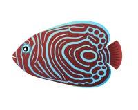 Imperial  aquarium tropical fish animated cartoon royalty free illustration