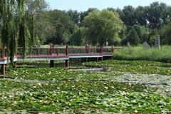 Imperial Garden of Beijing Stock Photo