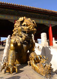 An imperial guardian lion in Forbidden City Stock Image