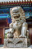 Imperial guardian lion Royalty Free Stock Photography