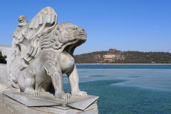 Imperial guardian lion in the Summer Palace. A ming dynasty imperial guardian lion (Shishi, or stone lion) in the Summer Palace, Beijing, China Royalty Free Stock Photo