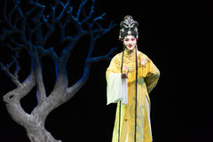 "Imperial noble consort- imperial harem or seraglio-Jiangxi opera ""Red pearl"" Royalty Free Stock Photo"