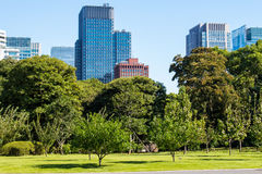 Imperial Palace East Gardens in Tokyo, Japan. Tokyo Skyline in the Imperial Palace East Gardens, Japan stock photography