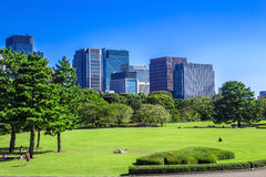Imperial Palace East Gardens in Tokyo, Japan. Tokyo Skyline in the Imperial Palace East Gardens, Japan stock photo