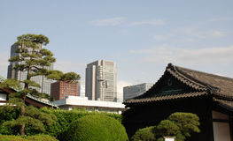 Imperial Palace Gardens Buildings, Tokyo Royalty Free Stock Image