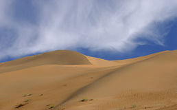 Imperial Sand Dunes Stock Images