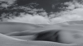 Imperial Sand Dunes Royalty Free Stock Photo