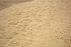 imperialistisk sand för dyner Arkivbild