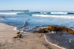 Imperialistisk strand, Kalifornien med havsväxt på stranden och fiskepir Arkivbilder