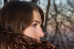 Impetuous Glance. Close-up of a beautiful young woman Royalty Free Stock Photos