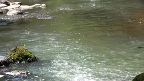 Impetuous stream stock footage
