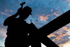 Impianti del tetto del martello Fotografia Stock Libera da Diritti