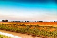 impianti di irrigazione al tramonto nella campagna Immagine Stock Libera da Diritti