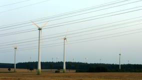 Impianto agricolo a fini energetici del vento video d archivio