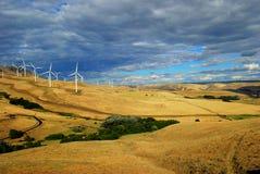 Impianto agricolo a fini energetici di energia eolica - stato di Washinton Fotografie Stock