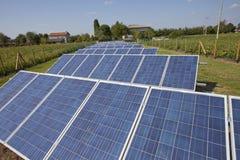 Impianto agricolo a fini energetici elettrico di ecologia con la batteria del pannello solare nella f verde Fotografia Stock Libera da Diritti