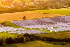 Impianto di ad energia solare Immagine Stock Libera da Diritti