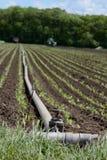 Impianto di irrigazione agricolo Immagine Stock