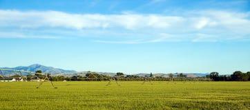 Impianto di irrigazione all'Idaho, agricuture Immagine Stock