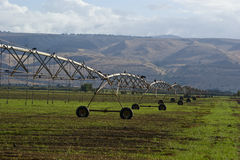 Impianto di irrigazione automatico Fotografia Stock Libera da Diritti