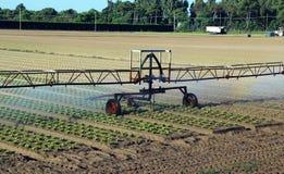 Impianto di irrigazione automatico nel campo Fotografia Stock
