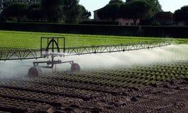 Impianto di irrigazione automatico nel campo Fotografie Stock
