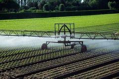 Impianto di irrigazione automatico nel campo Immagini Stock
