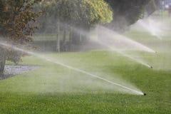 Impianto di irrigazione che innaffia automaticamente gli alberi Fotografie Stock Libere da Diritti
