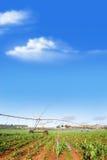 Impianto di irrigazione che innaffia un campo dell'azienda agricola Immagine Stock