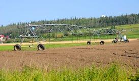 Impianto di irrigazione concentrare del perno Fotografie Stock Libere da Diritti