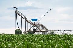 Impianto di irrigazione concentrare del perno in campo di mais Fotografia Stock Libera da Diritti
