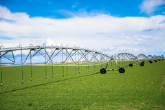 Impianto di irrigazione del campo di agricoltura Immagine Stock