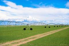 Impianto di irrigazione del campo di agricoltura Fotografia Stock Libera da Diritti