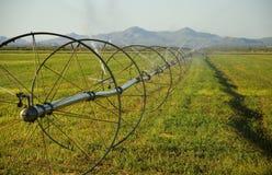 Impianto di irrigazione dell'azienda agricola di Commerical sulle rotelle Fotografie Stock