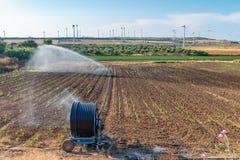 Impianto di irrigazione di estate sulla campagna aperta Fotografia Stock