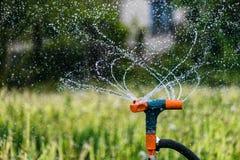 Impianto di irrigazione di giardinaggio che innaffia le piante verdi Gocce di acqua dello spruzzatore e della spruzzata di rotazi Fotografie Stock