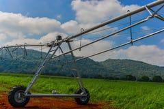 Impianto di irrigazione lineare Immagine Stock
