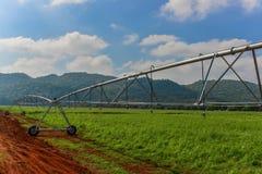 Impianto di irrigazione lineare Fotografia Stock