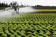 Impianto di irrigazione moderno Fotografia Stock